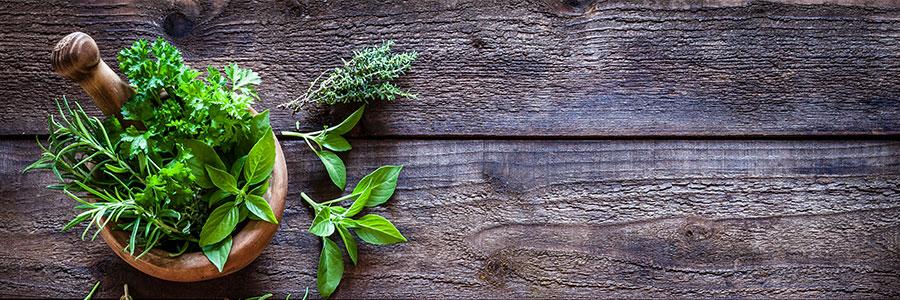 Plants with healing properties
