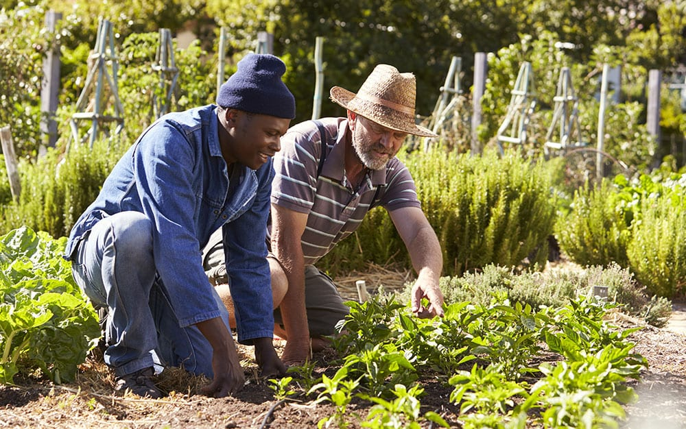 Garden together for Mental Health